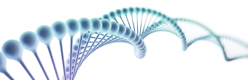 DNA strand on white background